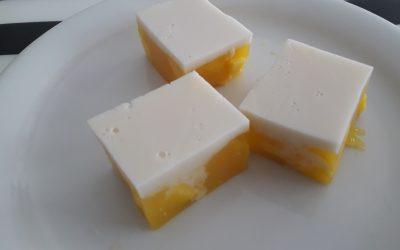 Mango-kokos jelly blokjes